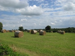 The countryside along the canal... make your hay while the what? ;-)