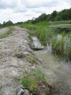Area of repaired canal bank...