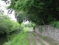 Back to a bit of rural tranquility... lush summer vegetation lining the banks all the way to Maynooth...