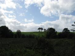 See those trees on the hill... are they the surveyors of the passers by?