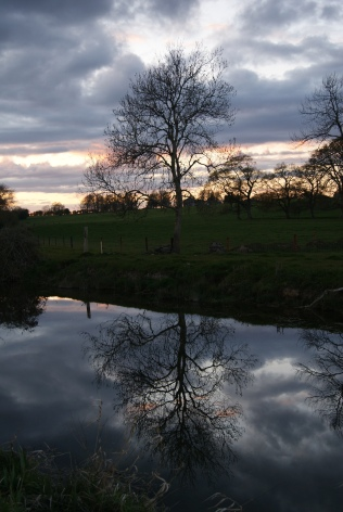 Trees... clouds... water... sky... perfection!
