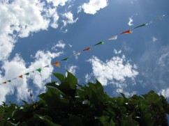 Sunday... at least the bunting was cheery and the sky blue... ;-)
