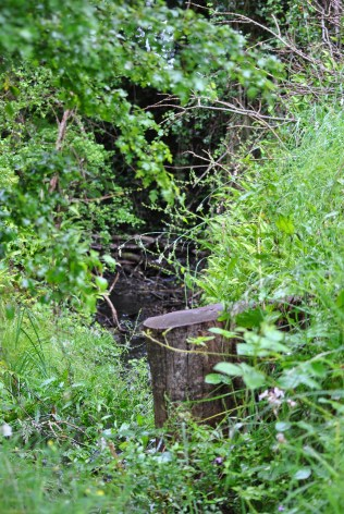 The sound of bubbling water .. a smaller feeder draining into the canal...