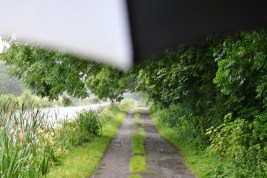 The tree lined section west of Tullamore... the raindrops making their own music on the brolly roof...