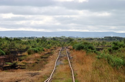 Looking south along the rail line...
