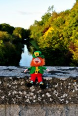Larry at the Royal Canal, Enfield, Co Meath...