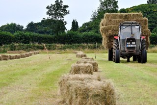Square bales...