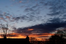 Winter sunrise... ginger red... is it to be said?