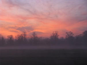 Jan 13... a Friday, train window sunrise...