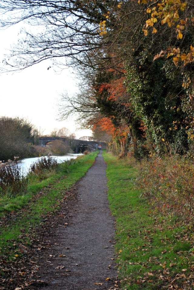 The autumn colours... the arches of Jackson's Bridge in the distance