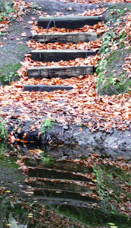 Canal bank stairs in the autumn,