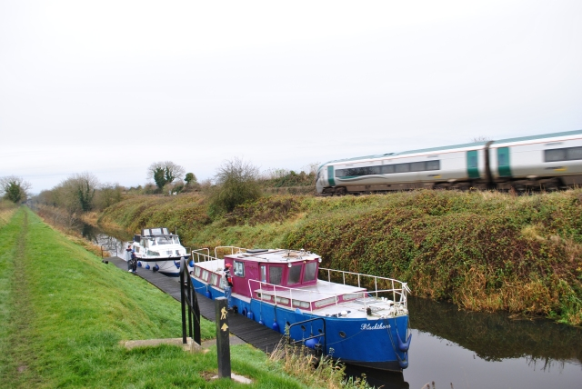 Blackthorn below the 15th Lock as the 'Sligo Express' rushed by to Connolly...
