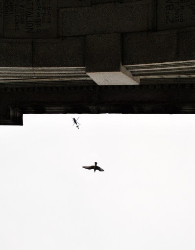Look up... they're looking down... chopper and bird as seen from below the Fusiliers Arch