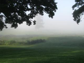 The mists of time? No... just a small morning mist...