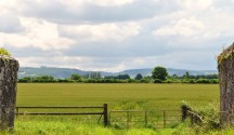 Summer's view of the Wicklow Mountains across a Kildare field, Ireland