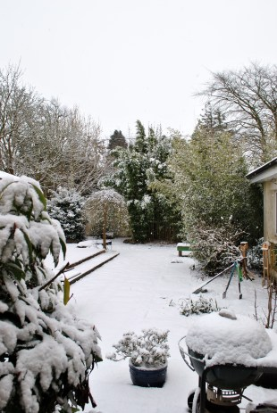 Looks idyllic, if a tad cold! My poor BBQ isn't too used to this treatment!