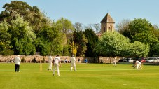 What a setting for a game of cricket! Pembroke CC in Dublin.