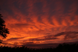 FBPF - August stunner!! BIG Kildare sunset...