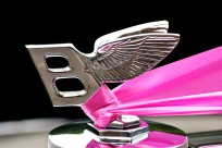 "The winged ""B"""