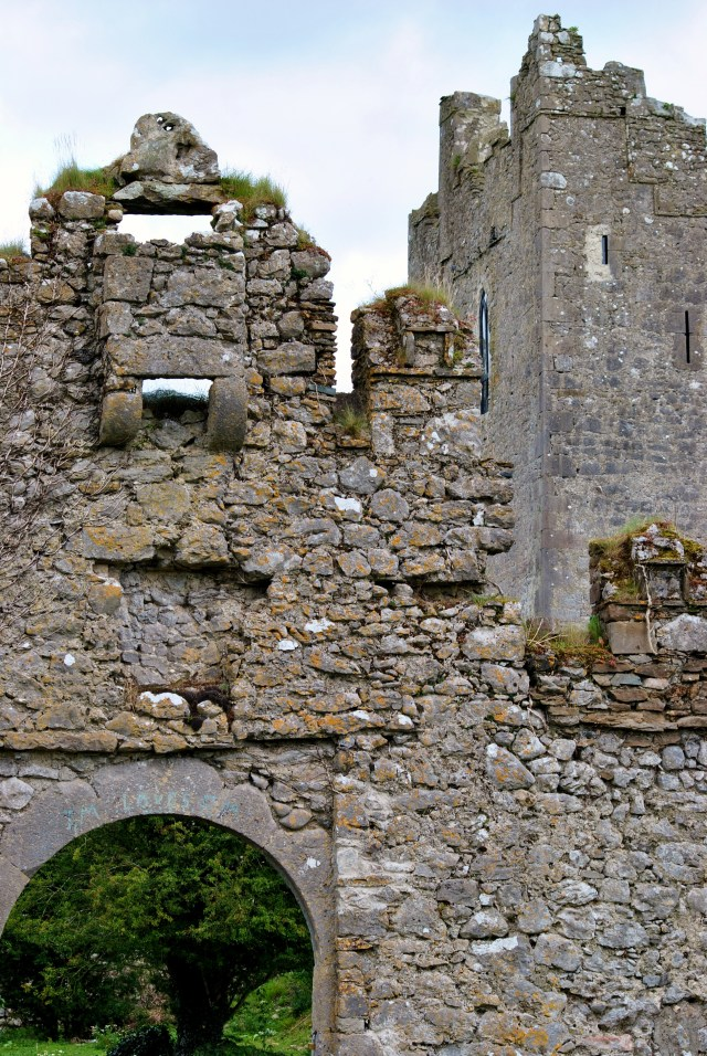 Somewhere in Offaly... Ireland. Walls...