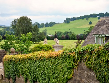 The lions of Lyons Estate... only a glimpse... Co Kildare, Ireland