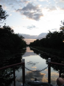 Golden sunsets along the Royal Canal!