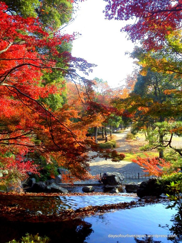 "Elle's Japan! Stunning autumn colours... than's for the ""borro"""