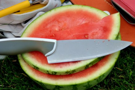 Watermelon in the park!
