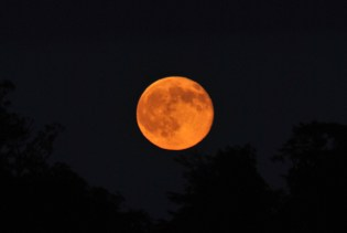 A glimpse of the full moon rising... Friday 13th June 2014