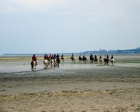 All our adventures begin in the heart... a horse ride on Sandymount Strand in Dublin is just what some need ...