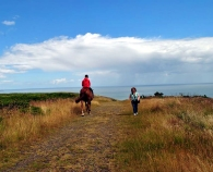 Howth summer fun! between the showers...