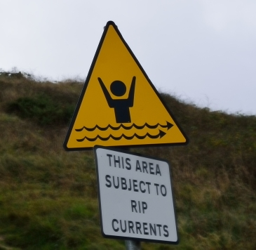 Oh well... do I swim... or do I go for a long walk on the beach?