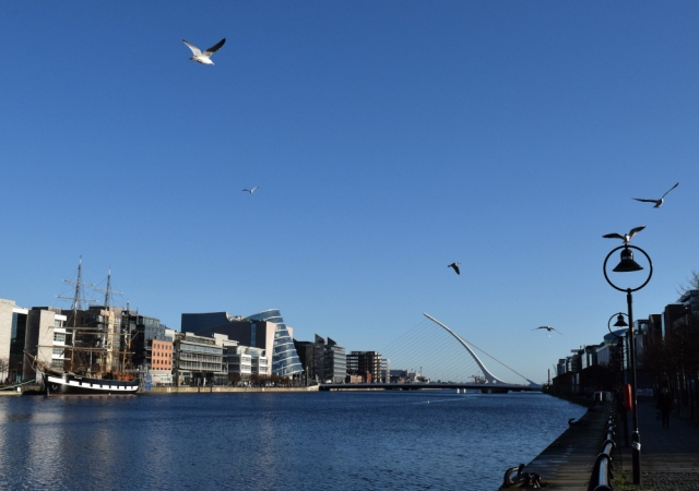 A clear January day in Dublin... mind the seagulls!