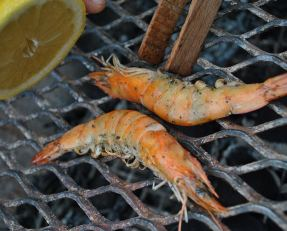 AaaaHH! The rewards of a long day out fishing... or a visit to the fish shop!! Prawns on the braai! Yummy!!