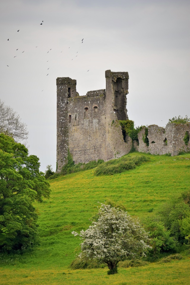The ruins of Dunmoe Castle on the north bank of the Boyne, Co Meath, Ireland