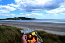 Beach Brunch!! The view from Bull Island to Howth on a bright day!