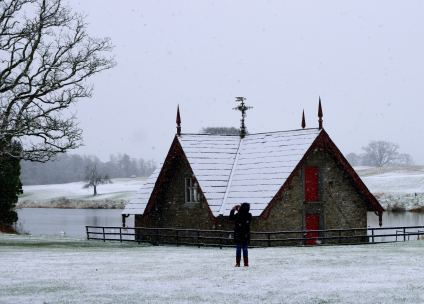 Aha! The treat of capturing the GLW in the snow... such fun!!