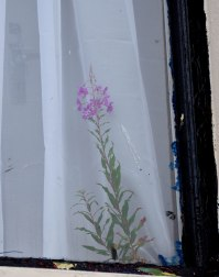 Where's the flower growing? The ordinary takes and extraordinary twist....