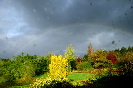 My bright and beautiful view... while the rain comes down... again!