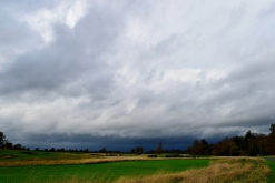 Wild weather... as only Abigail can throw at us! Storm clouds building over Carton House, Maynooth, Co Kildare, Ireland