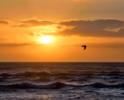 A few minutes staring out across the unrest and waves has a calming effect on a restless state of mind