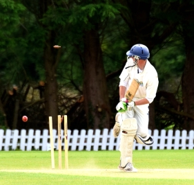 Timber!! What's happening here? I haven't a clue... so says he who sidestepped another straight ball!!