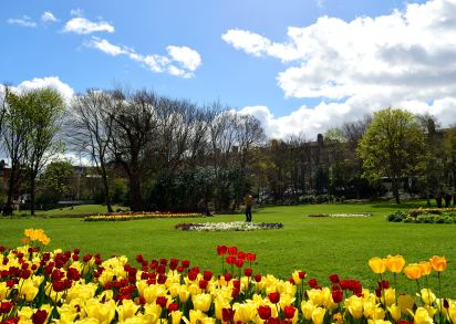 Merrion Square spring!