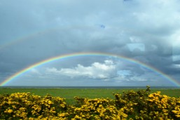 Stunning rainbow over the Irish Sea... north of Wicklow Town, 19 May 2016. An unexpected bright point along the way!