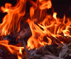 Summer needs a hand... with a fire, indoors!!