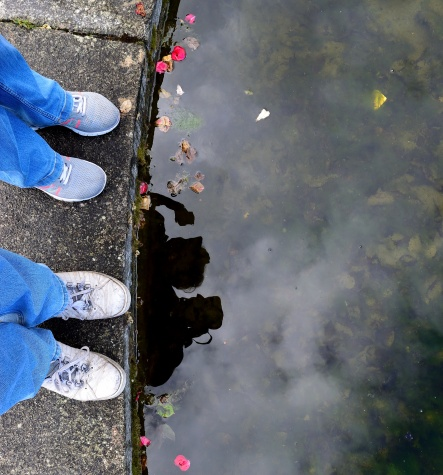Self portrait of a pair! Looking down!