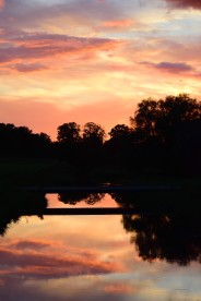 Do you see a Monet moment in this Co Kildare sunset? I do!
