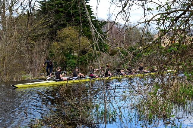 Steady those blades ladies... steady... and push off. On Dublin's Liffet, just after the portage at the