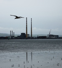 Poolbeg in Grey! Another bright Irish summer's day?NOT!!