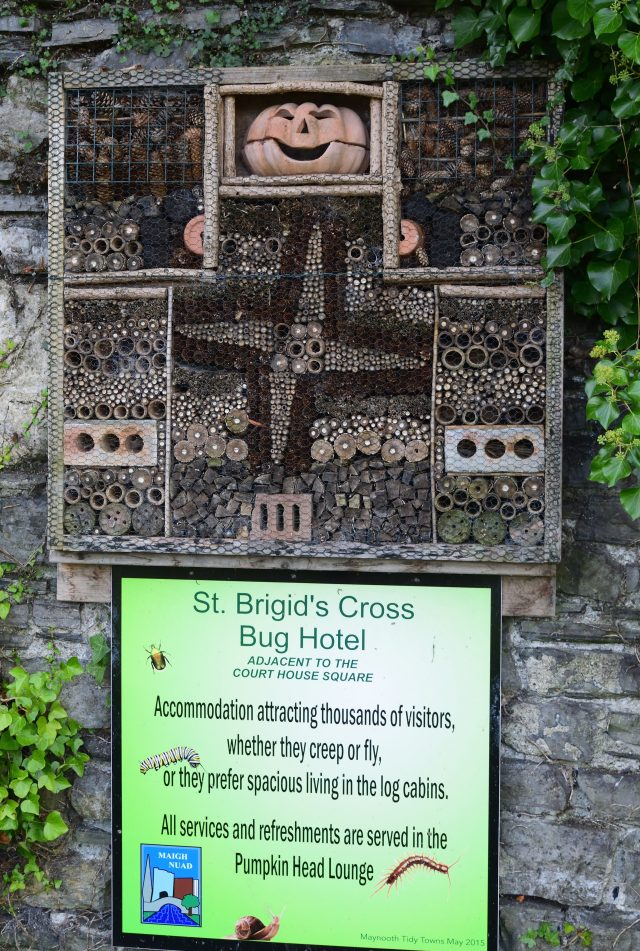 Repurposed bug bliss! As seen in Maynooth, Co Kildare, Ireland